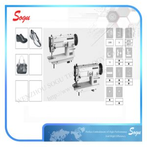 Single/Double Needle Presser Foot Zigzag Machine pictures & photos