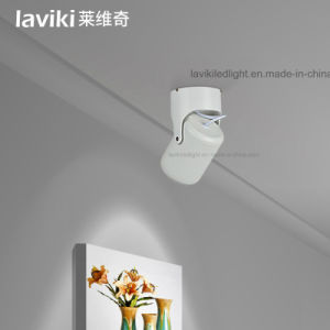 2.4G RF Wireless Remote Control LED Dimmable Track Light with 15W pictures & photos