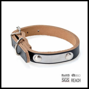 Adjustable Leather Padded Custom Pet Dog Collars with Engraved Nameplate pictures & photos