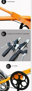 One Second Folding Drive Bike 16 Inch Yz-6-16 pictures & photos