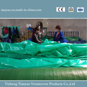 Transparent PVC Tarpaulin for Inflatable Boat pictures & photos