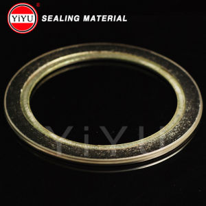 Flexible Graphite Spiral Wound Gasktet with Inner Ring pictures & photos