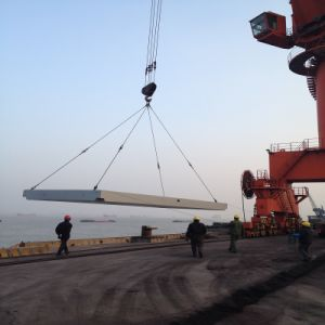 Fast and Cheapiest Project Shipping From Shanghai to Buenos Aires pictures & photos
