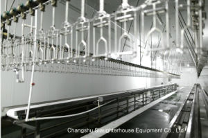 Conveyor/ Hanging Line/Transfer-Live Bird pictures & photos