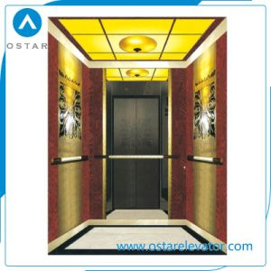 China Luxury Villa Elevator Price and Home Lift for Passenger pictures & photos