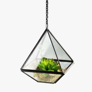 Lowest Price Geometric Glass Terrarium for Flower pictures & photos