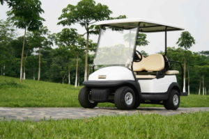 2 Front Seater Plus 2 Rear Seater Electric Golf Cart pictures & photos