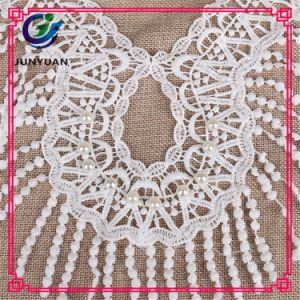 Indian Lace Embroidery Fabric Collar Lace pictures & photos