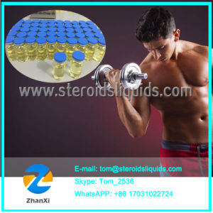Finished Oil Injectable Anabolic Steroids Testosterone Sustanon 250 250mg/Ml pictures & photos