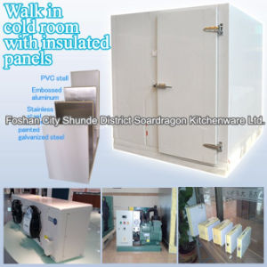 Walk in Cold Room with Insulated Panels pictures & photos