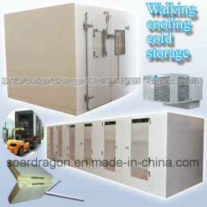 Walking Cooling Cold Storage Room pictures & photos