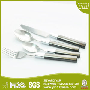 Plastic Handle Flatware pictures & photos