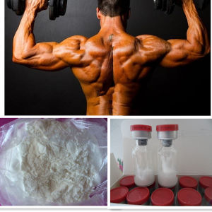 High Quality Steroid Hormone Testosterone Phenylpropionate CAS: 1255-49-8 pictures & photos