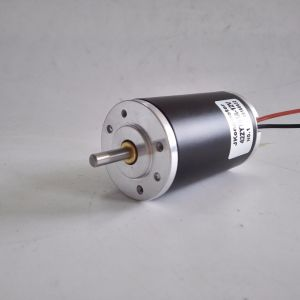 42zyt02A O. D42mm 12V / 24V Electric Brush DC Motor, Rated Torque 57mnm, Rated Speed 3000~3700rpm, Rated Power 20W pictures & photos