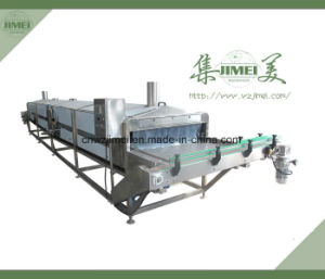 Canned Fruit and Vegetable Production Line with Factory Price for Export pictures & photos
