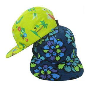 Print Custom Design 5 Panel Hat Cap pictures & photos