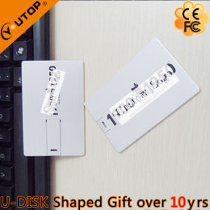Hot Custom Logo Gift Metal Card USB Flash Disk (YT-3101-03) pictures & photos