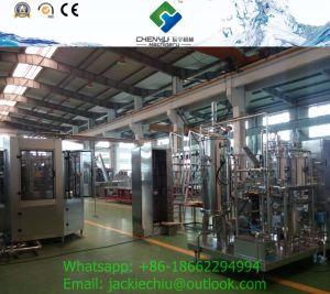 Fruit Flavoured Carbonated Soft Drinks Making Machine pictures & photos
