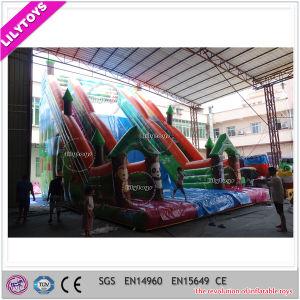 Hot Sale Commercial Cheap Giant Inflatable Slide for Amusement Park pictures & photos