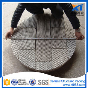 Ceramic Structured Packing Chemical Tower Packing pictures & photos
