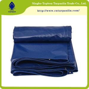 Waterproof & Sunshade PVC Awning Tarpaulin Sheet Tarps Cover Tb0018 pictures & photos