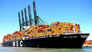 Msc Sea Shipping From China to Koper pictures & photos
