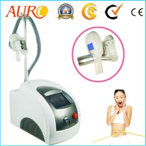 Cryolipolysis Fat Freezing Machine for Salon Use pictures & photos