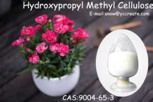 Hydroxypropyl Methyl Cellulose with 99% Purity Pharmaceutical Intermediates CAS: 9004-65-3 pictures & photos