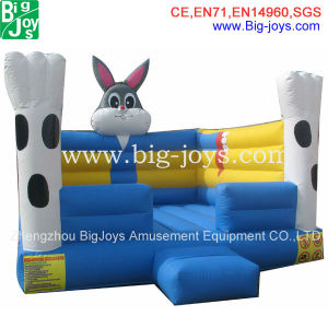 Large Inflatable Bouncer, Kids Inflatable Castle Boncer (BJ-F08) pictures & photos