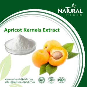 Health Care Supplement Bitter Apricot Kernel Extract /Vitamin B17 /Laetrile Powder 98%, 99% pictures & photos