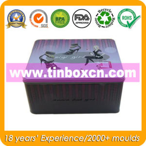 Metal Tin Container for Lady Shoes, Gift Tin Box pictures & photos