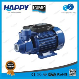 Peripheral Electric Water Pump From Happy (PM) pictures & photos