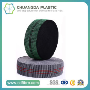 High Tenacity PP Elastic Webbing Used in Child Seat pictures & photos