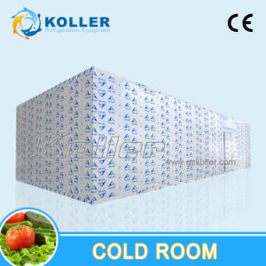 Walkin Freezer Cold Room for Fish/Meat/Vegetables pictures & photos