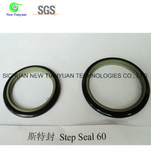 OEM Kfm/PTFE Step Seal for CNG Compressor pictures & photos