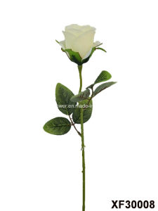 Artificial/Plastic/Silk Flower Single Stem of Rose (XF30008) pictures & photos