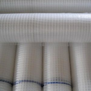 Plastics Scaffold Sheeting pictures & photos