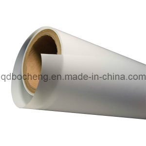 PTFE Membrane pictures & photos