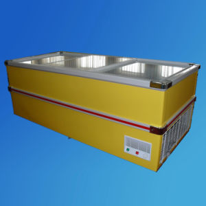 2.5m Jumber Freezer (SD-980) pictures & photos