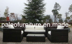 Luxury Round Wicker Garden Rattan Outdoor Sofa (PAS-029)