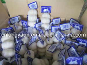 Pure White Fresh Garlic with 4.5cm pictures & photos