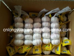Chinese Fresh Garlic (4.5cm-6.0cm) with Small Packing pictures & photos