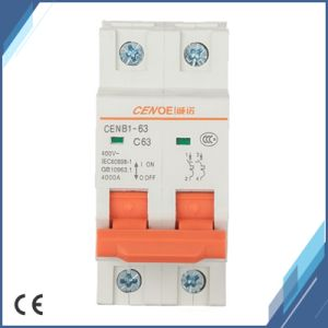 2p 240V Mini Circuit Breaker with Current Overload and Short Circuit Protection pictures & photos