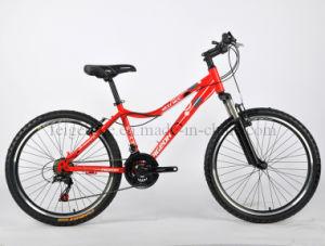 Beautiful Women Mountain Bike (FP-MTB-J01) pictures & photos