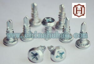 Screw/Dinpan Framing Head Self Drilling Screw pictures & photos