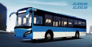 CNG City Bus