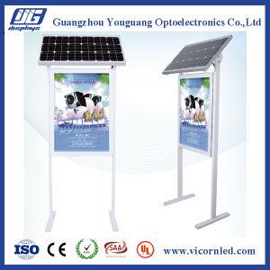 Double side Solar Powered LED Light Box-SOL-60