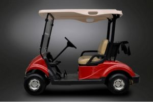 Dongfeng Electric Golf Car with High Quality