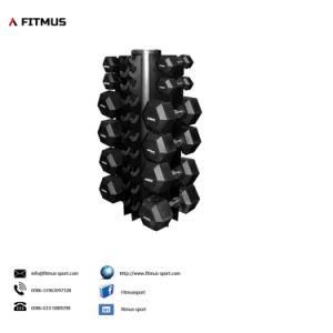 4 Sided Vertical Dumbbell Rack pictures & photos