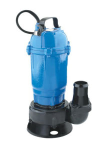 Sewage Pump (WQ) pictures & photos